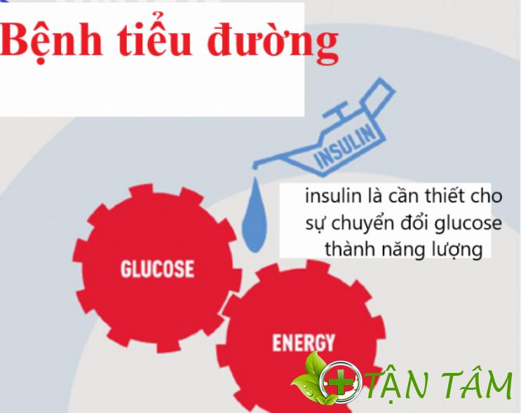 Bệnh tiểu đường là gì ?