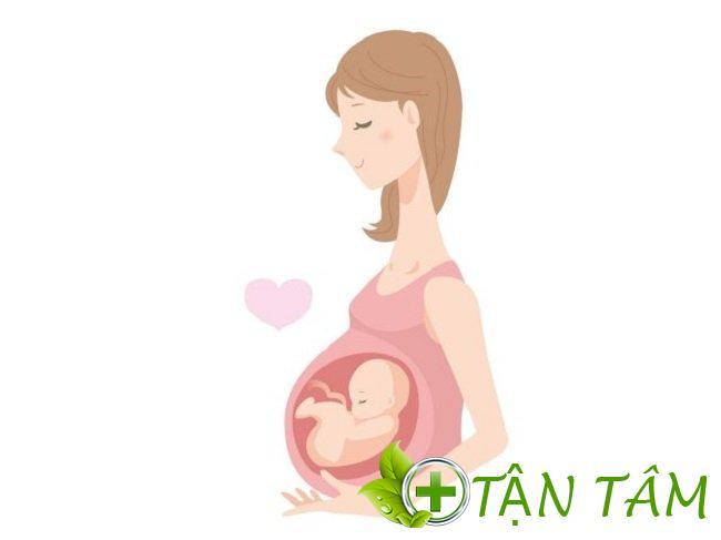 Quá trình phát triển cân nặng của thai nhi chuẩn nhất theo WHO